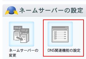 select-dns-setting